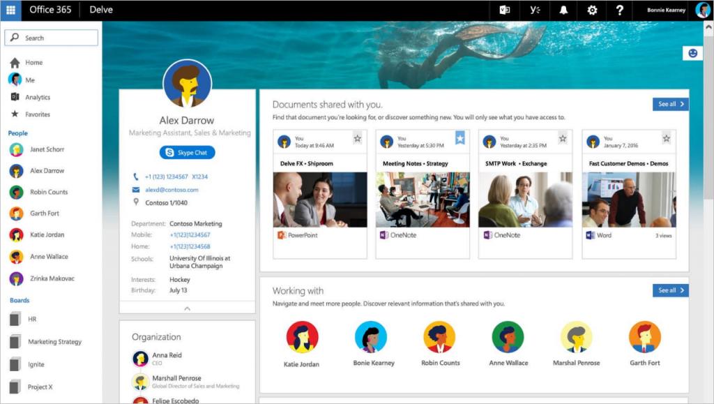 Screenshot of initial version of Microsoft Delve