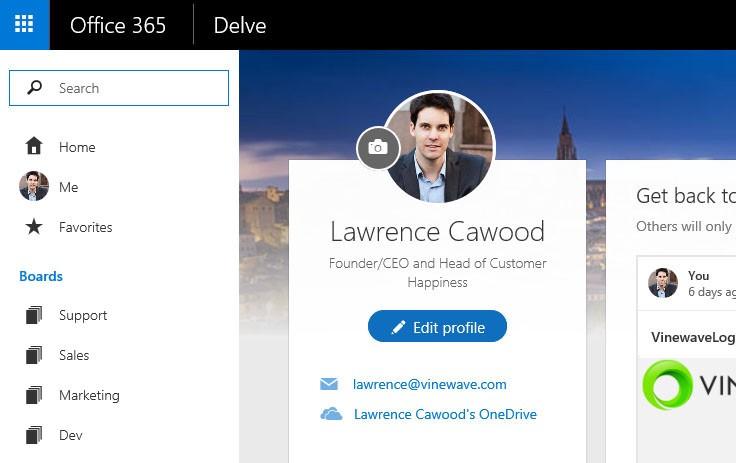 Screenshot of a Delve profile at Vinewave