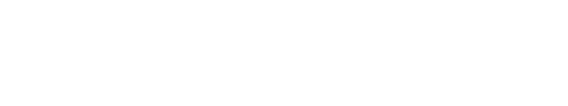 Concentric Health Experience logo white